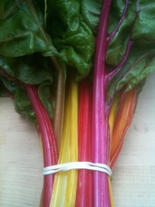 Stunningly beautiful and vibrant Swiss chard, the first of the season.